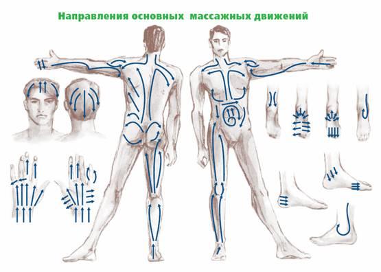 Ниже приведены 3 схемы движения банок при баночном массаже.